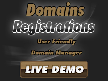 Low-cost domain name service providers